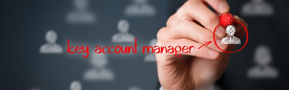 Online training Key-accountmanagement