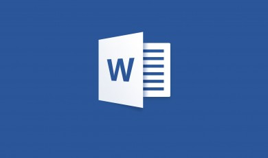 Microsoft Word basis